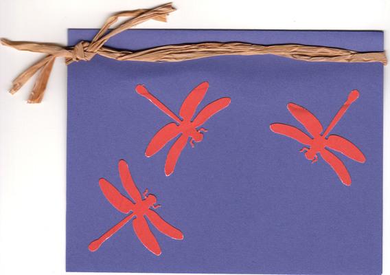 041 - Dragonflies
