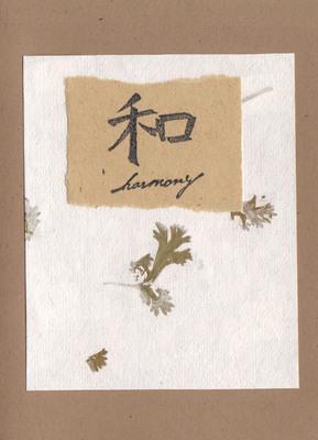 105 - Harmony