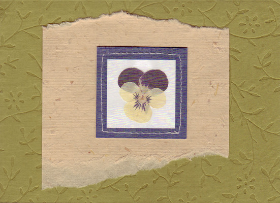 149 - Pansy on lush flower-pattern embossed paper