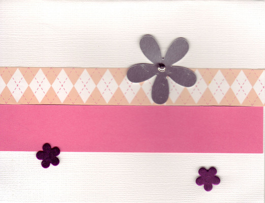 004 - Flowers on white background with pink band