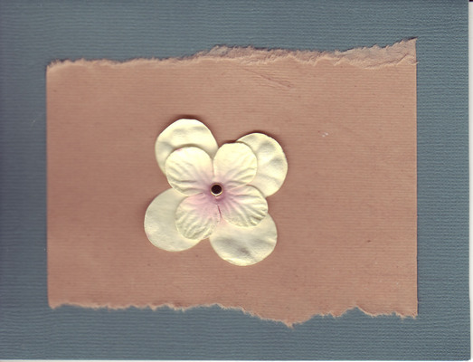 050 - Flower on brown and blue paper