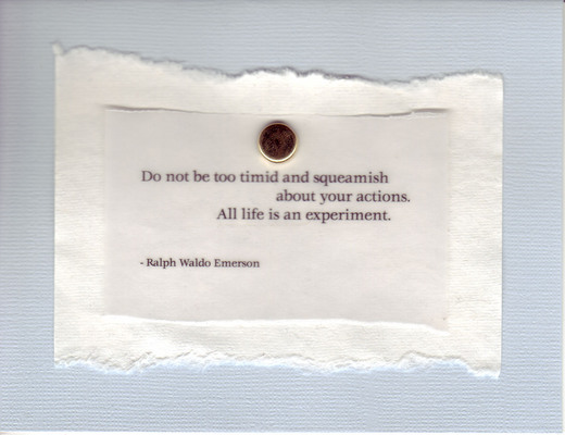 (SOLD) 083 - 'Do not be too timid and squeamish about your actions.  All life is an experiment' on white and blue paper