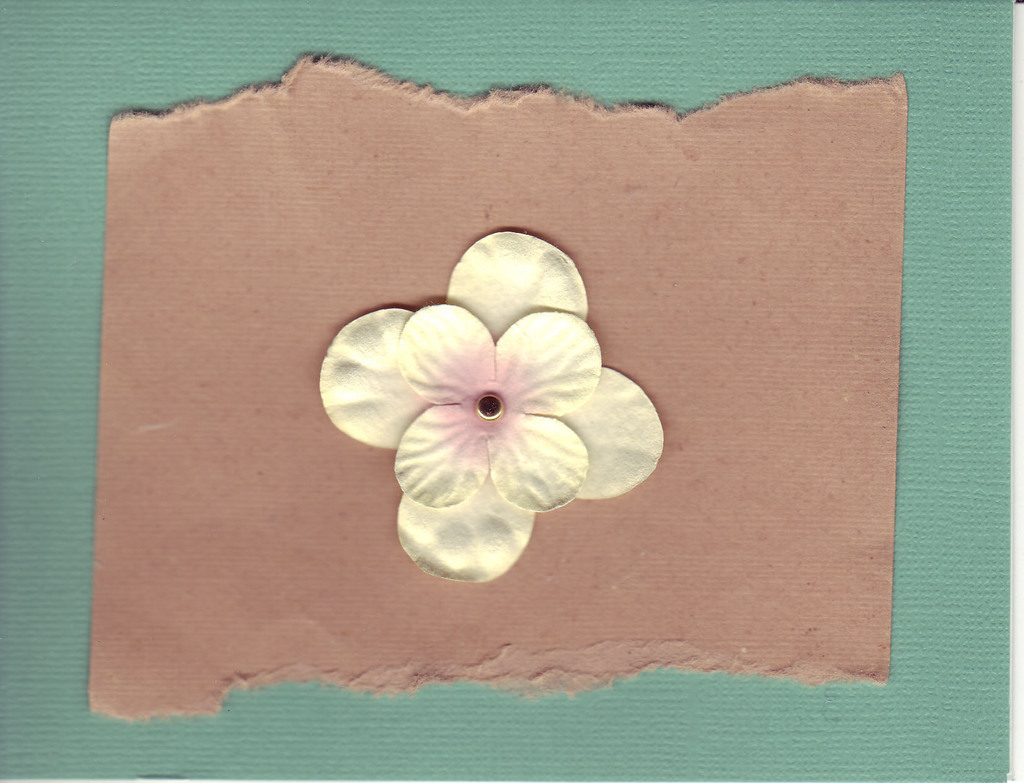049 - Flower on brown and green paper