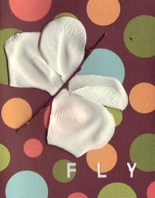 037A - 'Fly' set on bubble patterned paper, dragonfly card