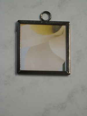 044 B - Daffodil closeup